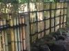Portland Japanese Garden