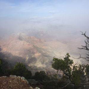 Grand Canyon in heavy morning fog