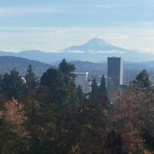 Portland Rose Garden – Mount Hood