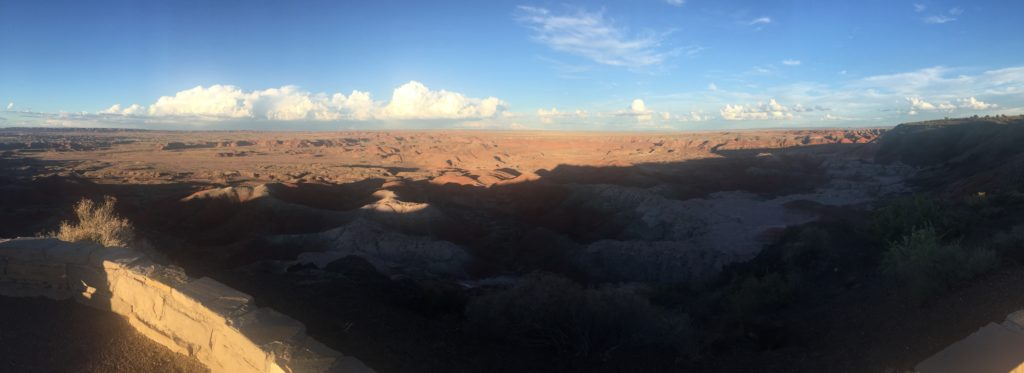 Petrified Forest panoramic
